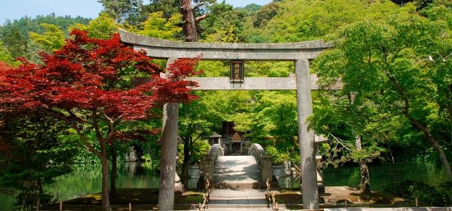 photodune-5348373-torii-at-japanese-temple-m